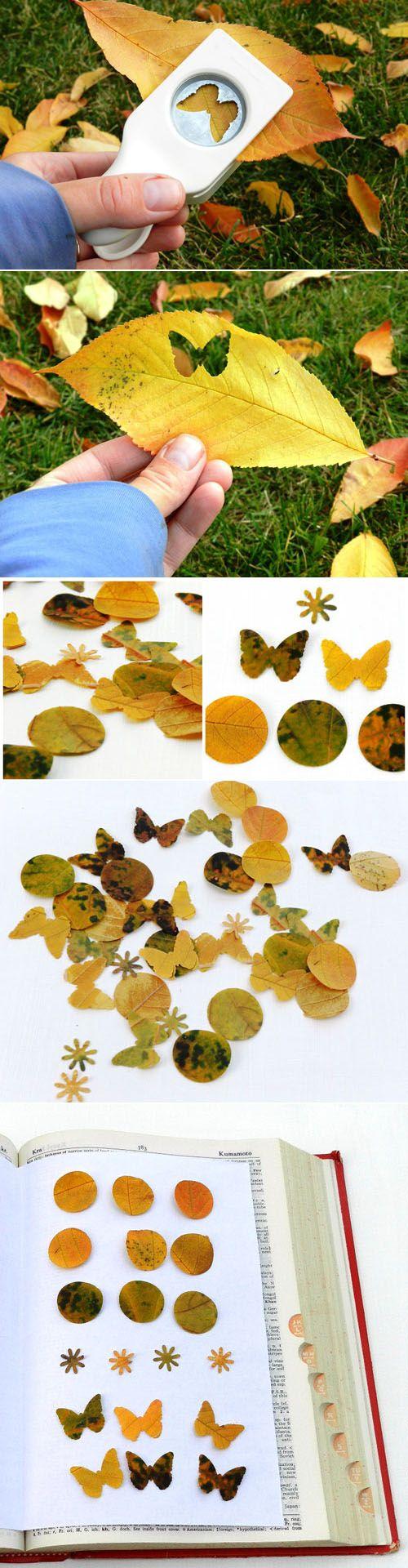 otoño 4