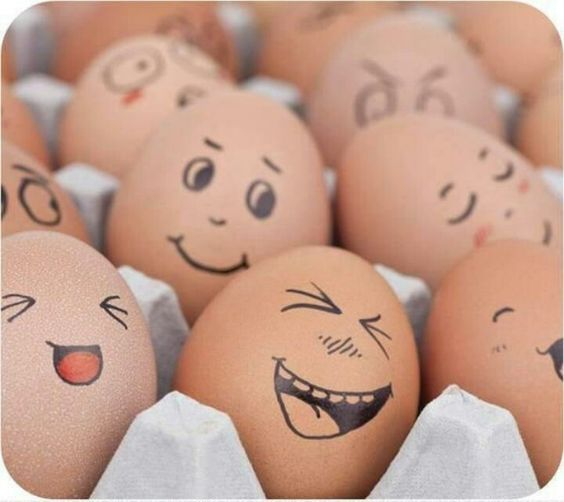 sanutri huevos 3